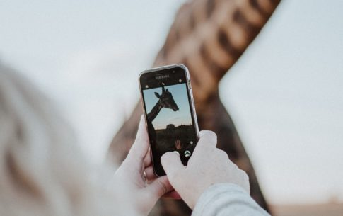 5 aplicativos para stories do Instagram